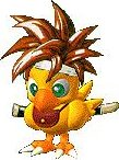 Crono, my adopted chocobo